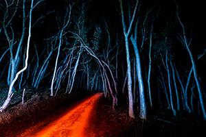 14_Tim Kilinc_Ghosts at night