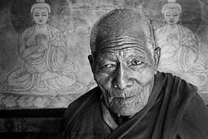 Tibetan Lama  (c) KoSheehan